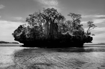 A Fotografia Na Sétima Arte – O Guia Do Fotógrafo Cinéfilo